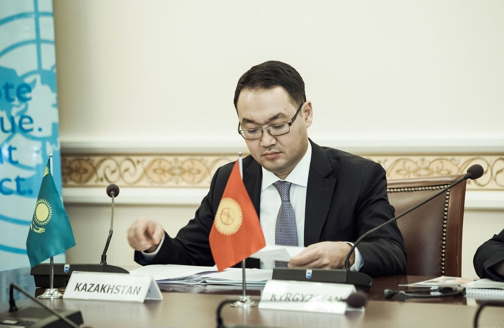 Ye. Ashikbayev, Kazakh Deputy Foreign Minister